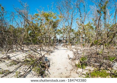 Pretty Fort Myers Beach on the west coast of Florida. - stock photo