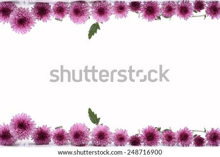 Pretty frame  flowers  - stock photo