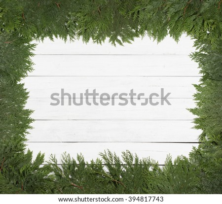 Pretty Green Cedar Limbs and Needles laying on sides as Surrounding Frame on Rustic White Painted Board Background Wall with Extra Room or Space in the center for copy, text, your words.  Horizontal