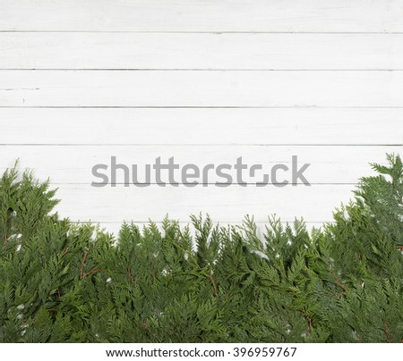 Pretty Green Cedar Tree Limbs and Needles laying along bottom side of frame on Rustic White Painted Board Background with extra room or space for copy, text, your words.  Horizontal card template