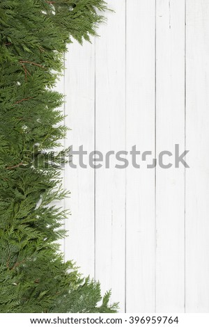 Pretty Green Cedar Tree Limbs and Needles laying along side of frame on Rustic White Painted Board Background with extra room or space for copy, text, your words.  Vertical card template