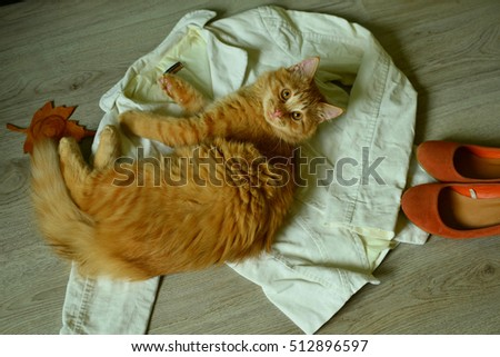 Pretty red cat on the woman's cloth.
