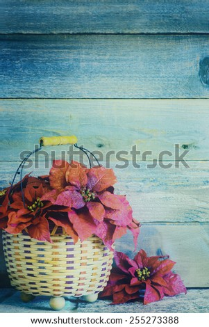 Pretty Red Christmas Poinsettia Flowers in a Basket on a Stone Surface against Rustic Wood Board Background with room or space for copy, text, your words.  Vertical with faded teal instagram filter - stock photo