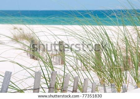 Pretty sand dune on Perdido Key, Florida - stock photo