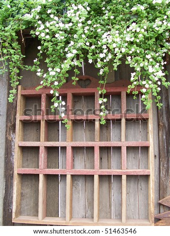 Pretty wall of greenhouse with flowers. - stock photo