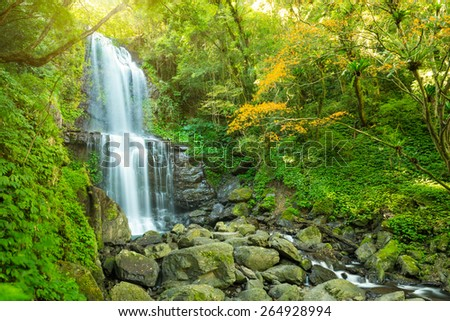 Pretty waterfall cascading over mountain rocks in lush green vegetation in scenic landscape