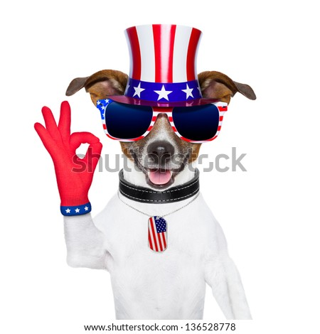 pride american dog with red ok fingers - stock photo