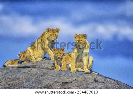 Pride of young lions resting on kopje - stock photo