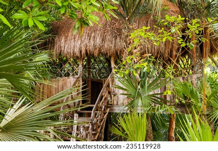 Primitive thatched shelter in dense Mexican jungle - stock photo