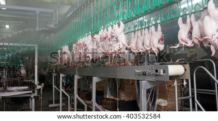 PRIMORSKO-AHTARSK, RUSSIA - MAY 24, 2012: Close up of poultry processing in food industry - stock photo