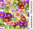 Primrose (primula) flowers. Seamless spring floral background. Watercolor - stock photo