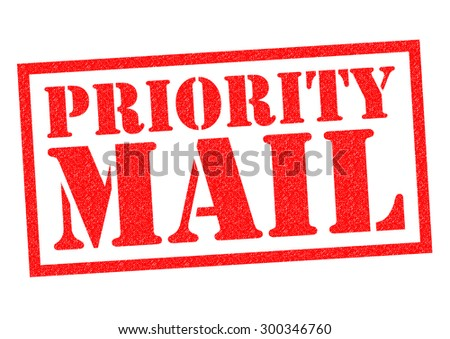 PRIORITY MAIL red Rubber Stamp over a white background. - stock photo