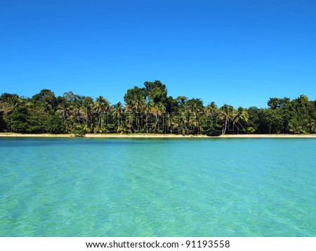 Pristine beach horizon with beautiful tropical vegetation and turquoise water - stock photo