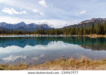 Pristine lake surrounded by pine forest in Rockies.