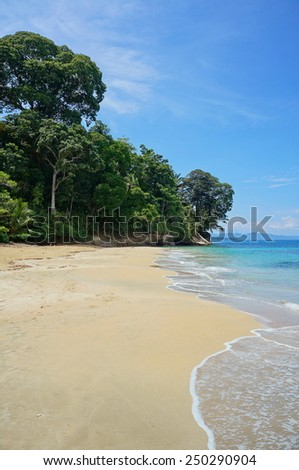 Pristine sandy beach in Costa Rica with lush tropical forest, Punta Uva, Puerto Viejo de Talamanca - stock photo