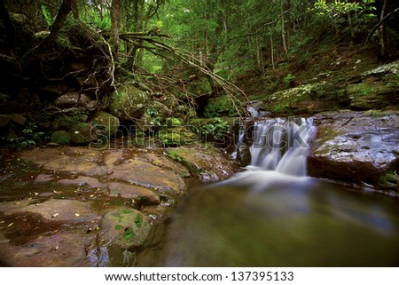 Pristine waterfall with tropical green foliage