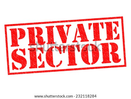 PRIVATE SECTOR red Rubber Stamp over a white background. - stock photo