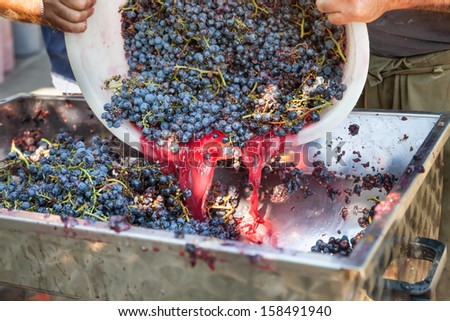 production of wine with red grape - stock photo
