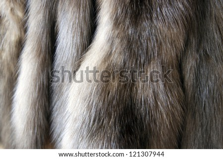 Products from natural fur of a sable and a mink - stock photo