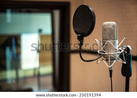 Professional condenser studio microphone - stock photo