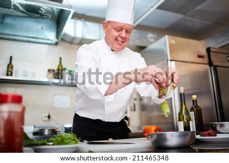 Professional cook making some dish - stock photo