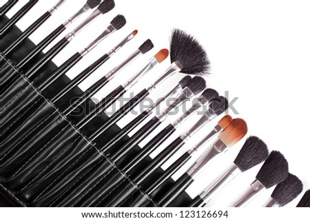 professional cosmetic brushes on white background