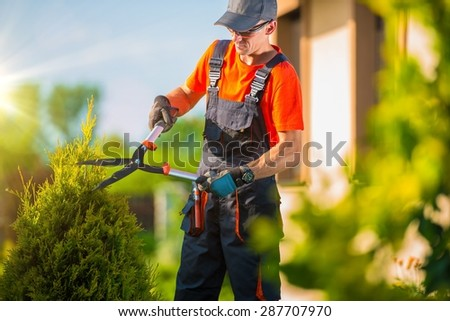 Professional Gardener Trimming Plants in the Garden. Gardener Using Bush Trimmer. - stock photo