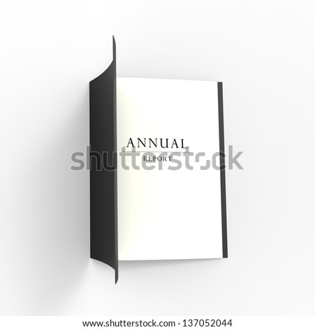 Professional looking annual business report.