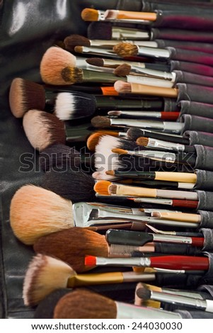 professional make-up brushes in leather case - stock photo