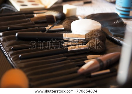 professional makeup brushes in close-up.