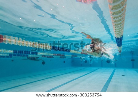 Swimming Pool Jump Stock Images Royalty Free Images Vectors