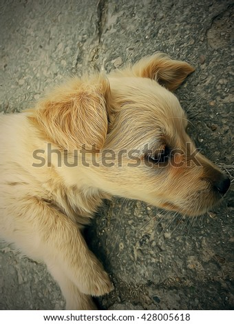 Profile illustration of a sad homeless puppy