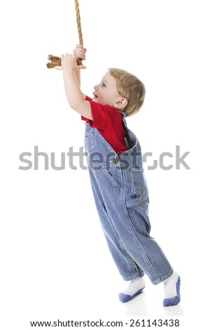 Profile of an adorable toddler wearing train engineer's pinstriped overalls happily stretching high to pull the rope that ring's the engine's bell.  On a white background. - stock photo