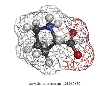 Proilne (Pro, P) amino acid, molecular model. Amino acids are the building blocks of all proteins. Atoms are represented as spheres with conventional color coding: hydrogen (white), carbon (grey), etc - stock photo