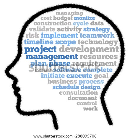 Project management in word cloud concept - stock photo