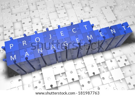 Project Management - puzzle 3d render illustration with text on blue jigsaw pieces stick out of white pieces