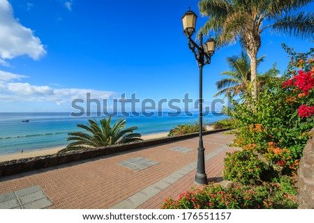 Promenade along beach in Morro Jable and tropical flowers and plants, Fuerteventura, Canary Islands, Spain