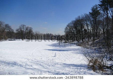 Prospect Park, Brooklyn in the snow - stock photo