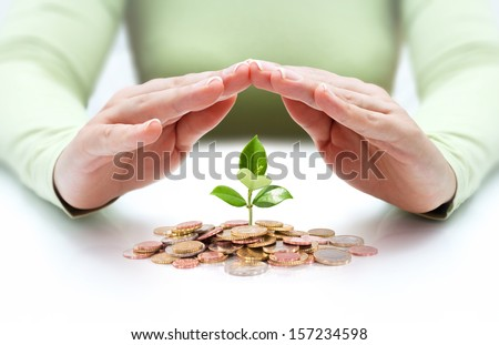 protect new business start-up - with hands and plant   - stock photo