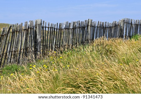 Protective barrier dunes at Quiberon in the Morbihan department in Brittany in north-western France