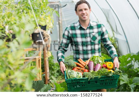 Proud man presenting vegetables in a basket standing greenhouse - stock photo