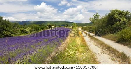 Provence landscape - stock photo