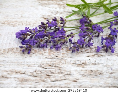 Provence lavender on the white painted rough board