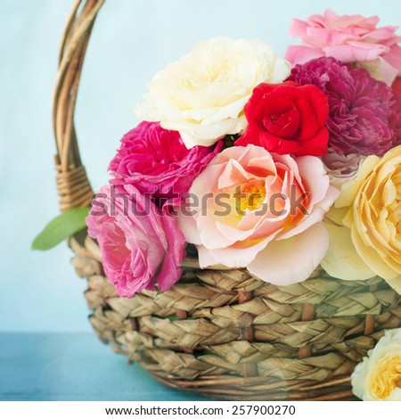 Provence style roses - stock photo