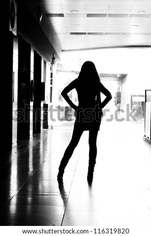 Provocative Woman Silhouette - stock photo
