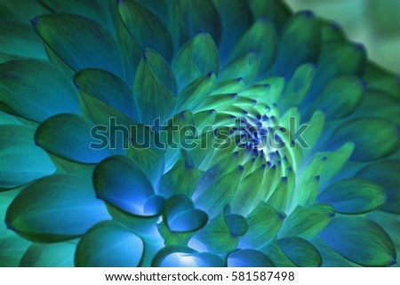 Psychedelic blue flower abstract
