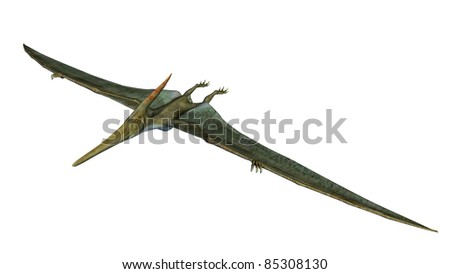 Pteranodon Dinosaur wings out gliding. From the Late Cretaceous geological period of North America in present day Kansas, Alabama, Nebraska, Wyoming, and South Dakota, one of the largest pterosaur. - stock photo