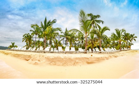 Public beach with palm trees in Cayo Levantado island, Dominican Republic