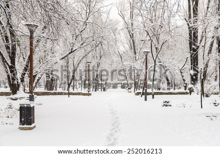 Public Park During Heavy Snowfall In Winter In Bucharest City, Romania.