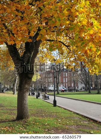 Public Park in Autumn - stock photo